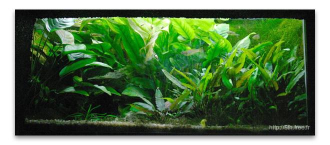Abri sous roche article l 39 osmoseur pour l 39 aquarium d for Vpc aquariophilie