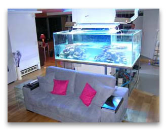 abri sous roche article l 39 osmoseur pour l 39 aquarium d 39 eau douce. Black Bedroom Furniture Sets. Home Design Ideas