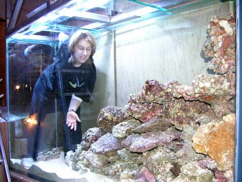 décoration aquarium eau de mer