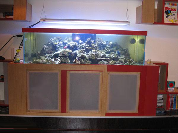 l 39 aquarium du doc georges. Black Bedroom Furniture Sets. Home Design Ideas