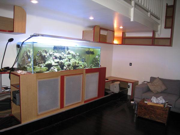 L 39 aquarium du doc georges for Aquarium en ligne