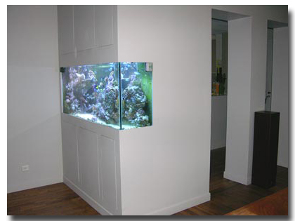 l 39 aquarium de sandrine. Black Bedroom Furniture Sets. Home Design Ideas