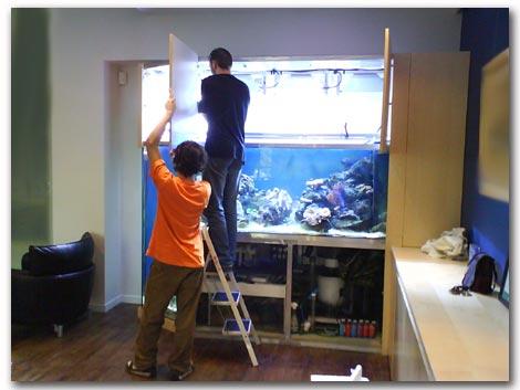 un aquarium avec fosse. Black Bedroom Furniture Sets. Home Design Ideas