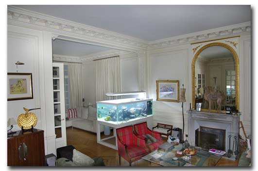 l 39 aquarium de la maison de la nouvelle cal donie. Black Bedroom Furniture Sets. Home Design Ideas