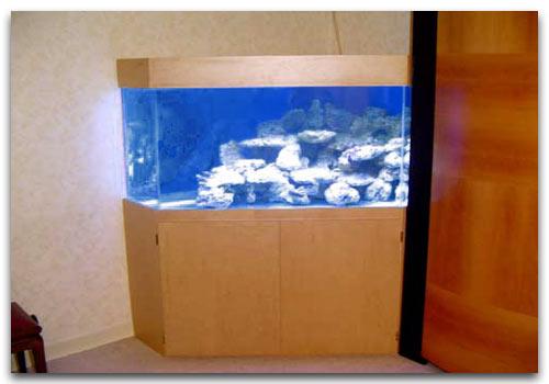 Un aquarium d 39 angle et son d m nagement for Aquarium angle