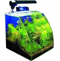 Neon aquarium pas cher 28 images aquarium pas cher for Gros aquarium pas cher