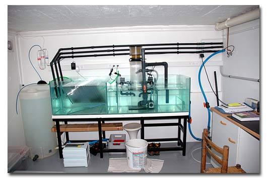 Aquarium eau de mer automatis e - Cuve a eau occasion le bon coin ...